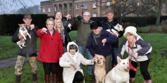 Dogs banned from Himley park
