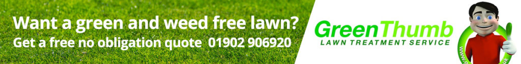greenthumb-lawn-treatment