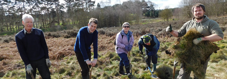 Gavin joins volunteers on Highgate Common