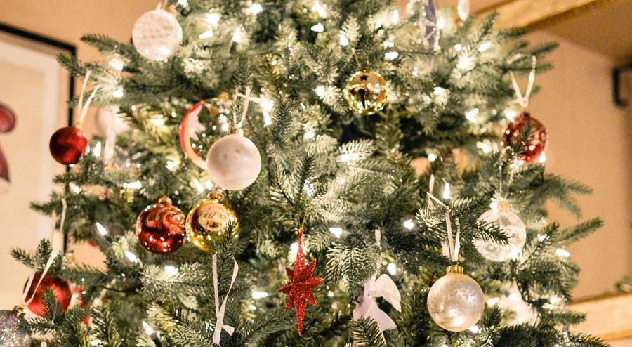 christmas-trees-wombourne2